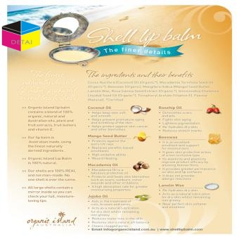 Single Side Printed flyer wholesale